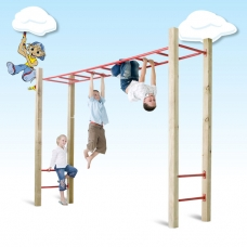 Monkey Bars and steps only